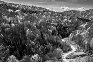 Bosnian landscapes